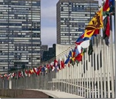 the purpose of the creation of the united nations The role of international organisations in world politics the creation of an international forum for of the united nations as an international.